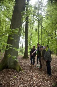Aufnahmen vom neuen Friedwald Lohhof bei Jesteburg